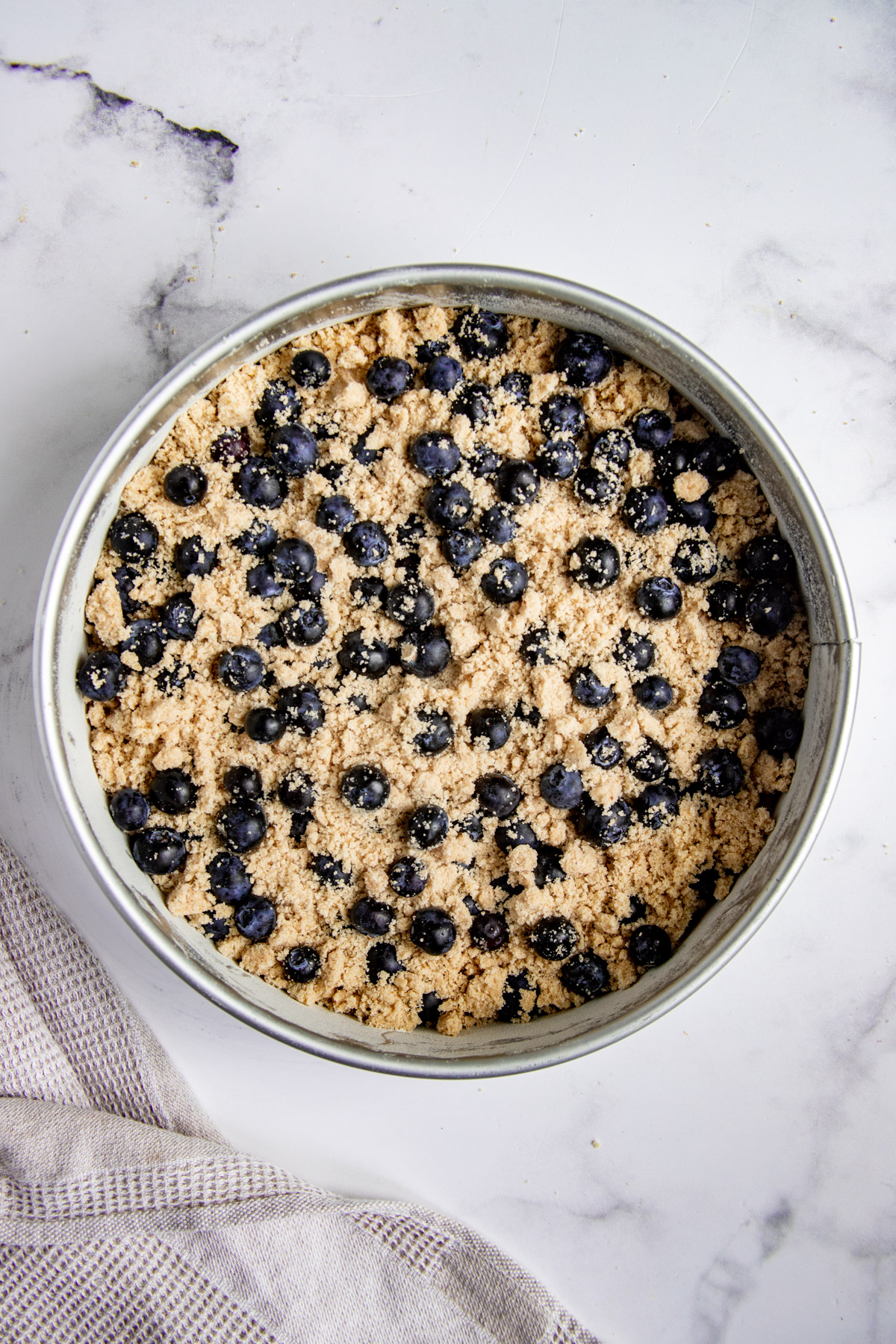 Blueberry Coffee Cake batter in springform pan with fresh blueberries and streusel